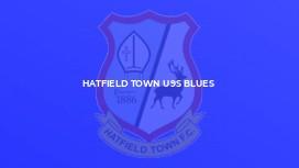 Hatfield Town U9s Blues