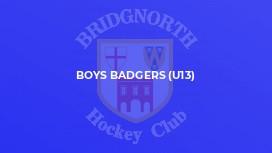 Boys Badgers (U13)