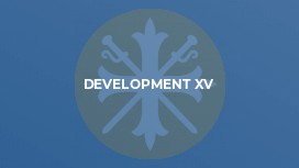 Development XV