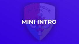 Mini Intro