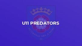 U11 Predators