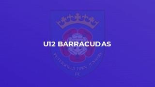 U12 Barracudas