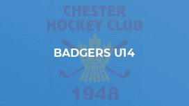 Badgers U14