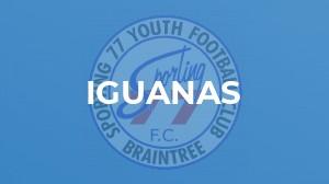 Iguanas v Hawks