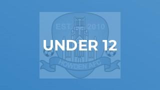 Under 10 v Ferry Park Juniors