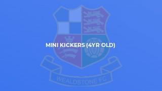 Mini Kickers (4yr old)