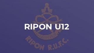 Ripon u12