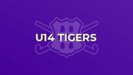 U14 Tigers