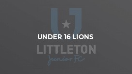 Under 16 Lions