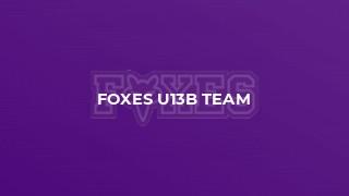 Foxes U13B Team