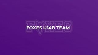 Foxes U14B Team