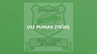 Panshanger Pumas U12 v Chase Side Youth Blue U12