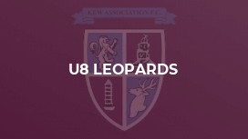 U8 Leopards