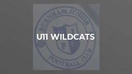 U11 Wildcats