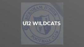 U12 Wildcats