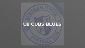 U8 Cubs Blues