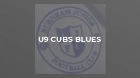 U9 Cubs Blues