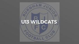 U13 Wildcats