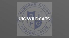 U16 Wildcats