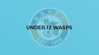 Under 12 Wasps