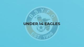 Under 14 Eagles