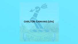 Carlton Caimans (U14)