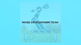 Mixed Development Team