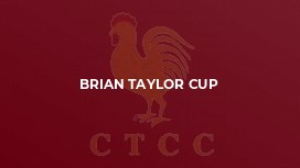 Brian taylor cup