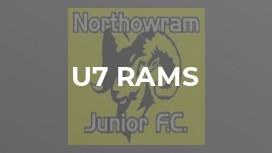 U7 Rams
