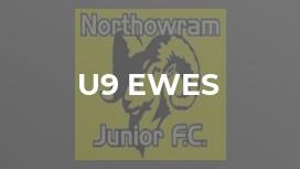 U9 Ewes