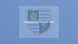 Warlingham Wolves U19s