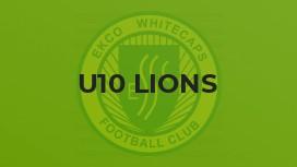 U10 Lions