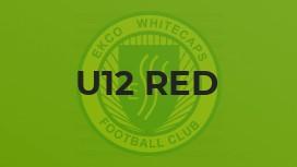 U12 Red