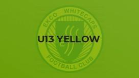U13 Yellow