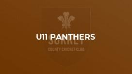 U11 Panthers