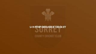 U-9 Performance Cricket