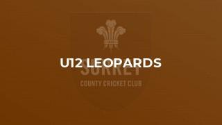 U12 Leopards