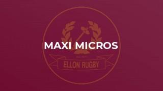 Maxi Micros