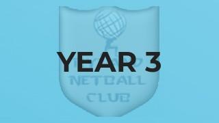 Year 3