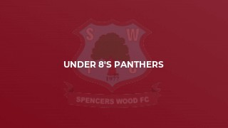 Under 8's Panthers
