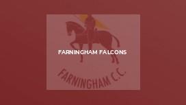 Farningham Falcons