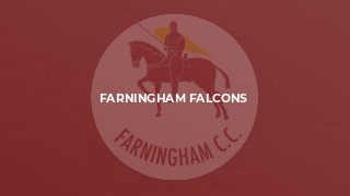 Farningham Falcons