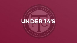 Tansley JFC Under 14's