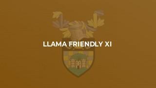 Llama Friendly XI