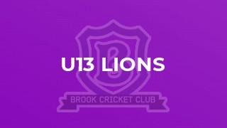 U13 Lions