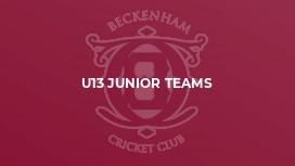U13 Junior Teams