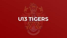 U13 Tigers