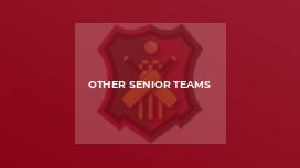 Other Senior Teams