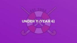 Under 11 (Year 6)