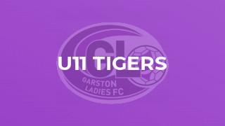 U11 Tigers